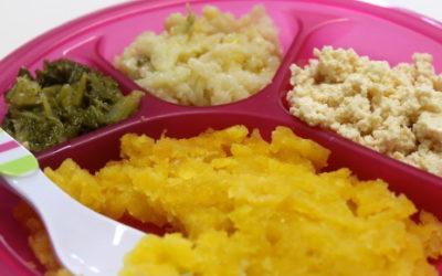 Receitas de refeições completas para o seu bebê
