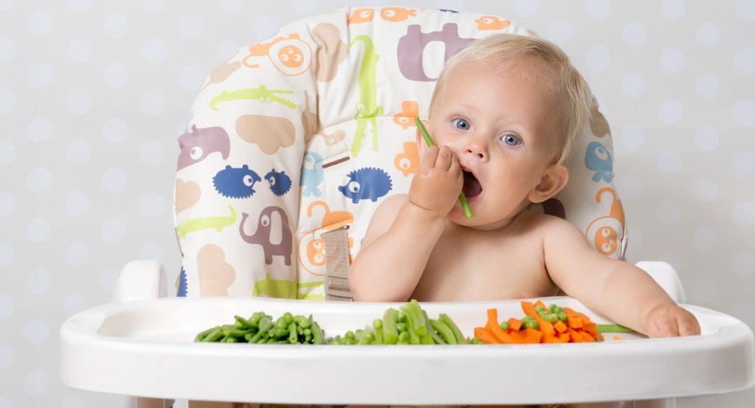Durante os dois primeiros anos de vida a escolha dos alimentos merece atenção especial